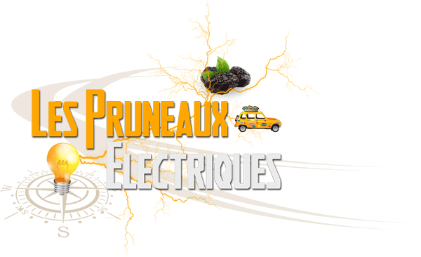 Pruneaux Électriques : équipage 1947 4L Trophy 2013
